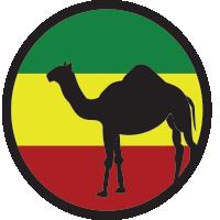 Ethiopia Harrar  $12