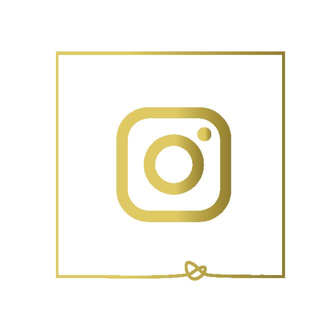 social media kit-02.png