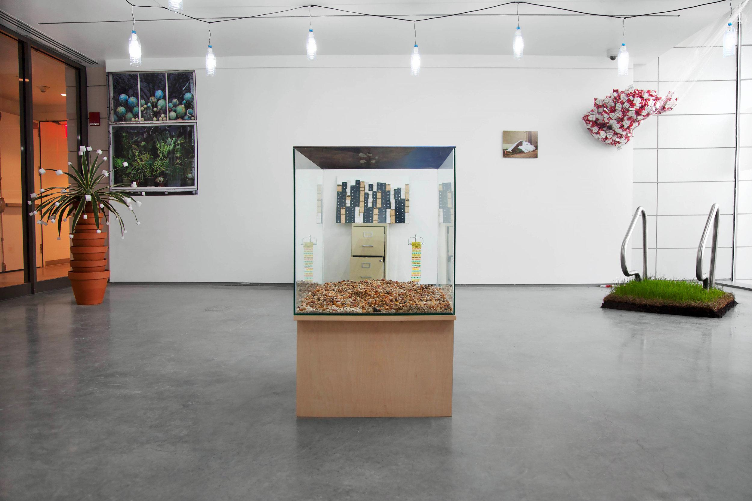 Installation view, 2014