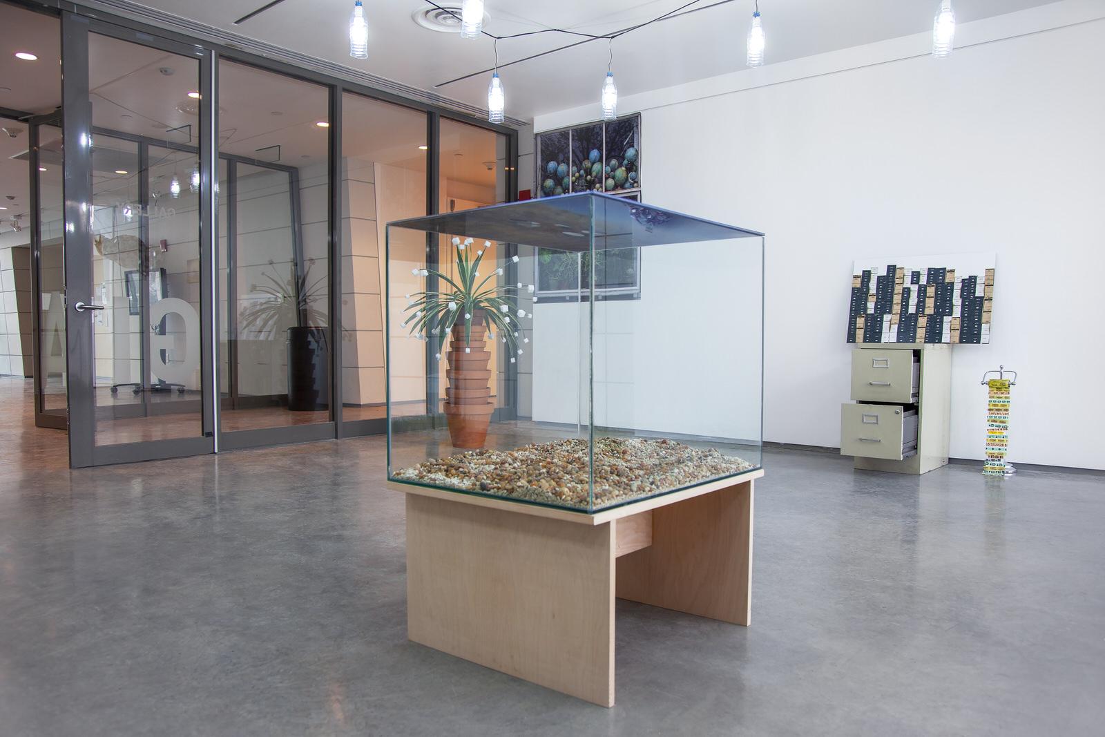 "Laqlouq Lakes II , 2014, double-sided digital c print sandwiched in plexiglass, hydrophobic coating, water (replaced daily), glass terrarium, gravel, birch wood base, 30""x 24""x 42"" (61 cm x 76.2 cm)"