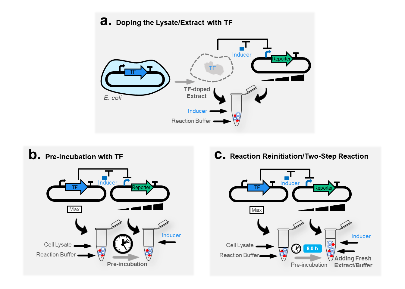 Optimization strategies applied to improve the fold change of a cell-free biosensor functioning through a transcriptional repressor. (a)  Doping,  (b)  Preincubation, and  (c)  reinitiation of (two-step) reaction. Adapted from  Pandi et al. 2019,  ACS synthetic biology  .