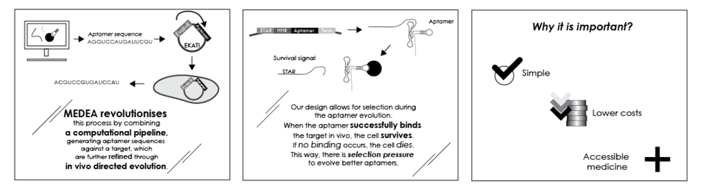 The MEDEA pipeline for aptamer production, consisting of both a Dry and a Wet Lab part, and the advantages it will offer to researchers.