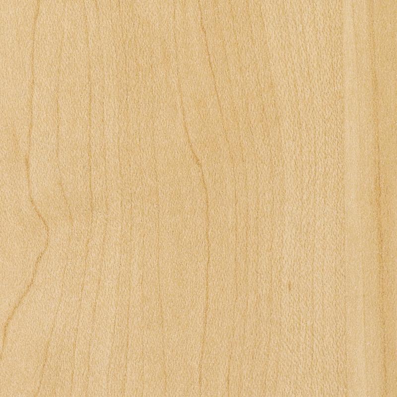 Kensington Maple