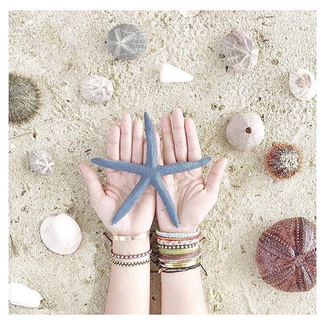 #sundayfunday 🌊☀️🌊 Here's to a #sandy and #salty one! ❤️ . . . #regram @puravidabracelets #shells #beach #sun #beachy #ocean #oceanchild #beachday