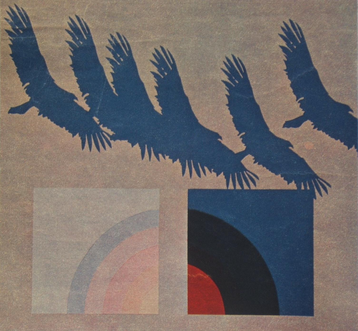 """""""BIRD IN FLIGHT - GOSHAWK"""""""