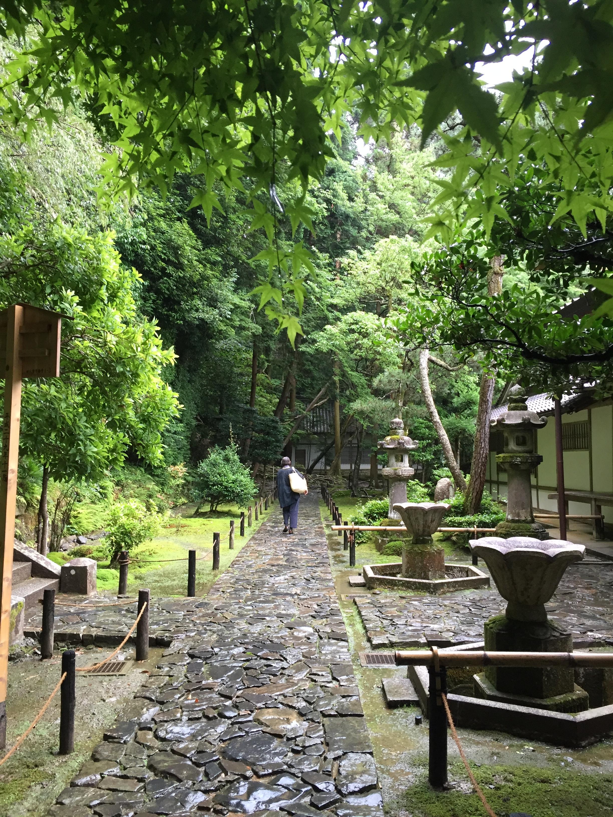 Daniela walking in the rain at Honen-in, Kyoto.