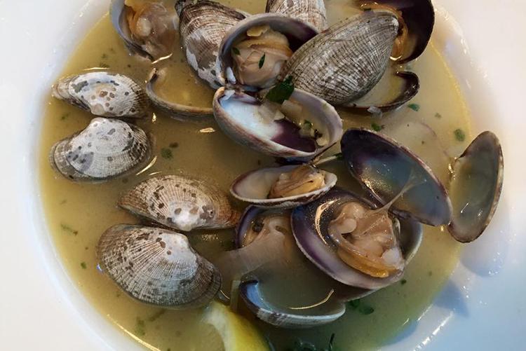 hood-canal-itinerary-taylore-shellfish-clams-shelton-wa.jpg