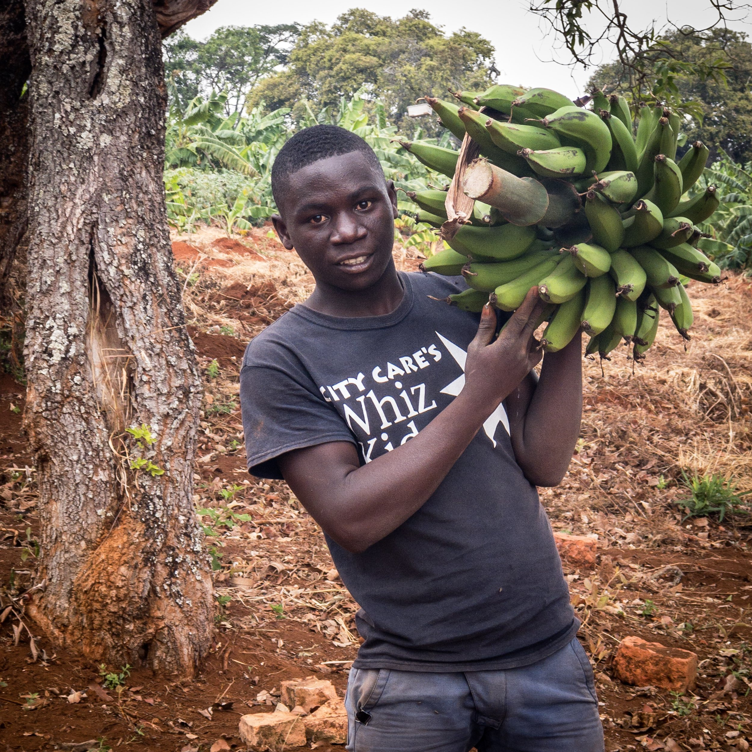 One of our youths with newly harvested bananas