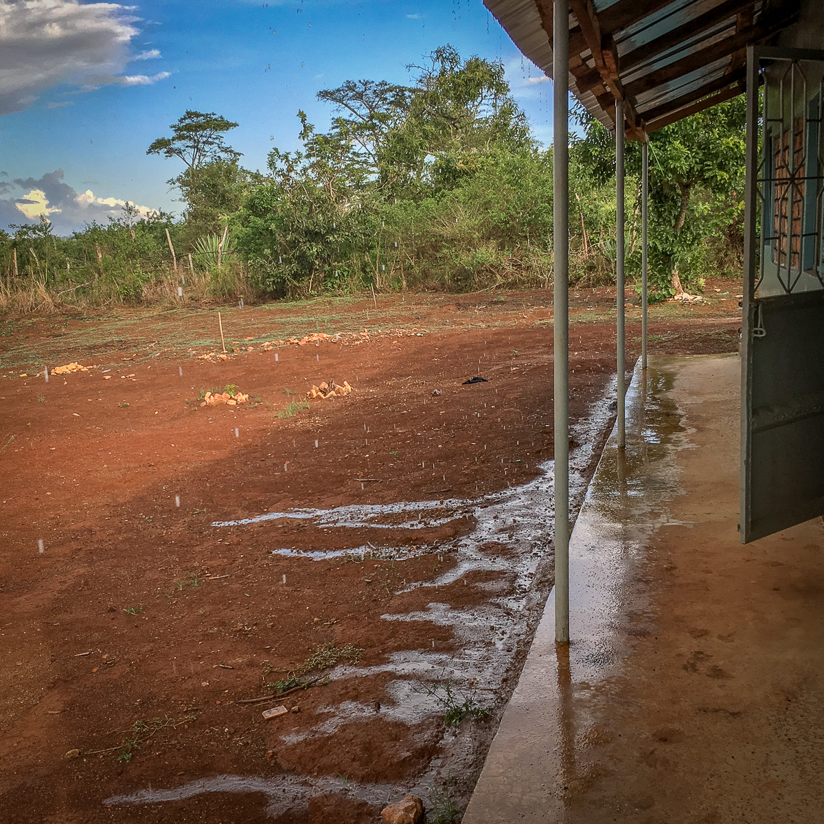As you can see, there is barely any rain falling in Benaco. Although the rainy season has begun in parts of Tanzania, it has not yet reached our little corner of the world...