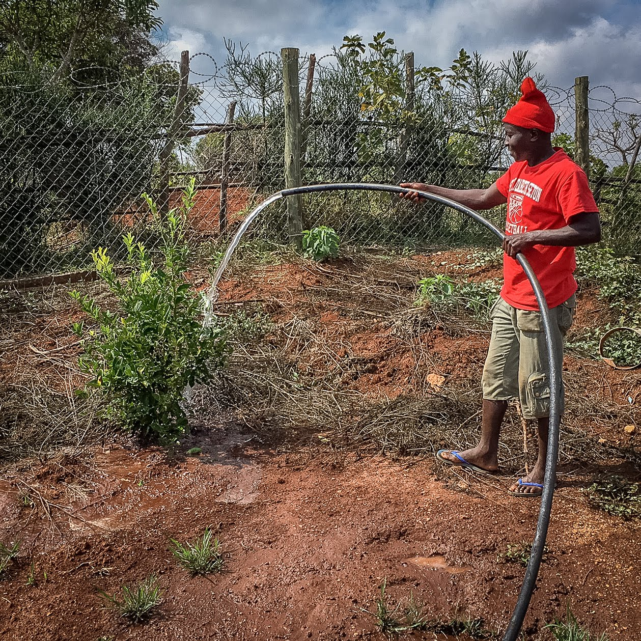 One of the youths waters the crops with a hose. Pipes are being laid to provide irrigation to the fields. Water for irrigation will be stored in a large tank that is under construction.