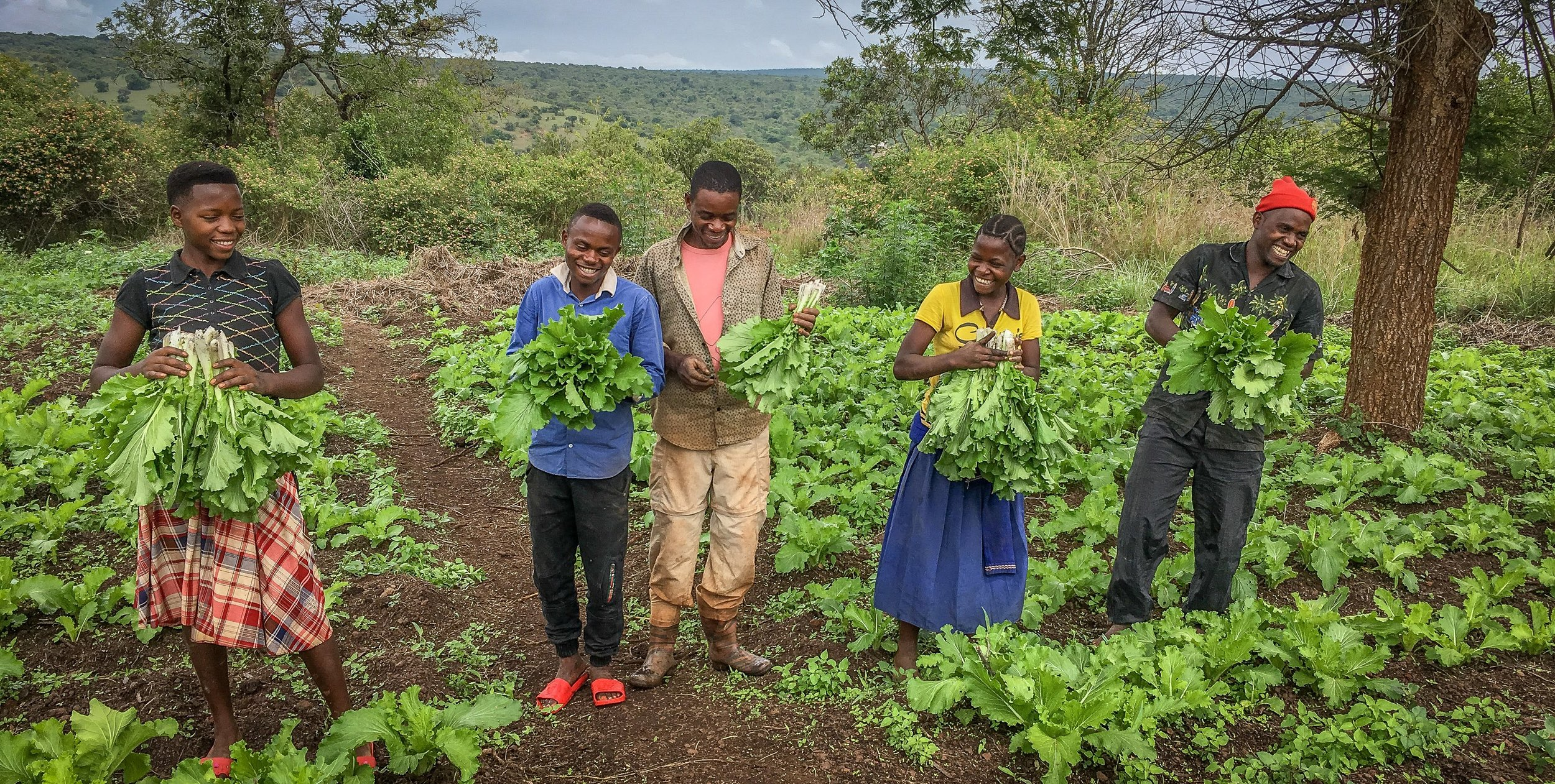 Happiness and smiles on the faces of our youth after they harvest some of the crops that are now growing abundantly due to having water on site from our well.