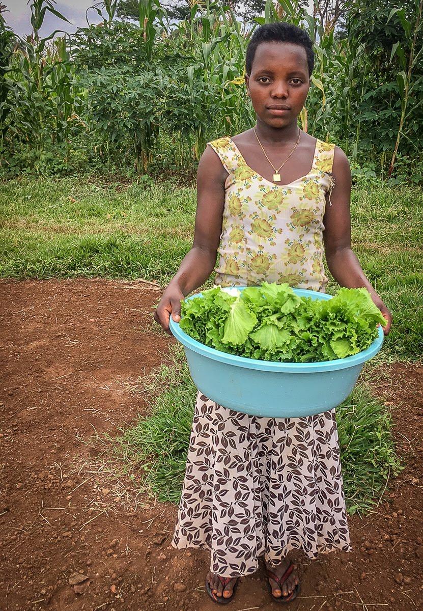 harvesting fresh produce.jpg