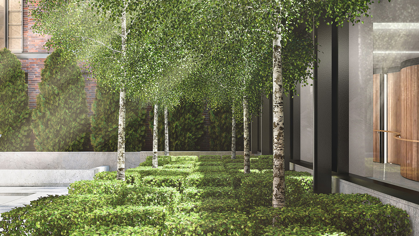 courtyardtrees.jpg