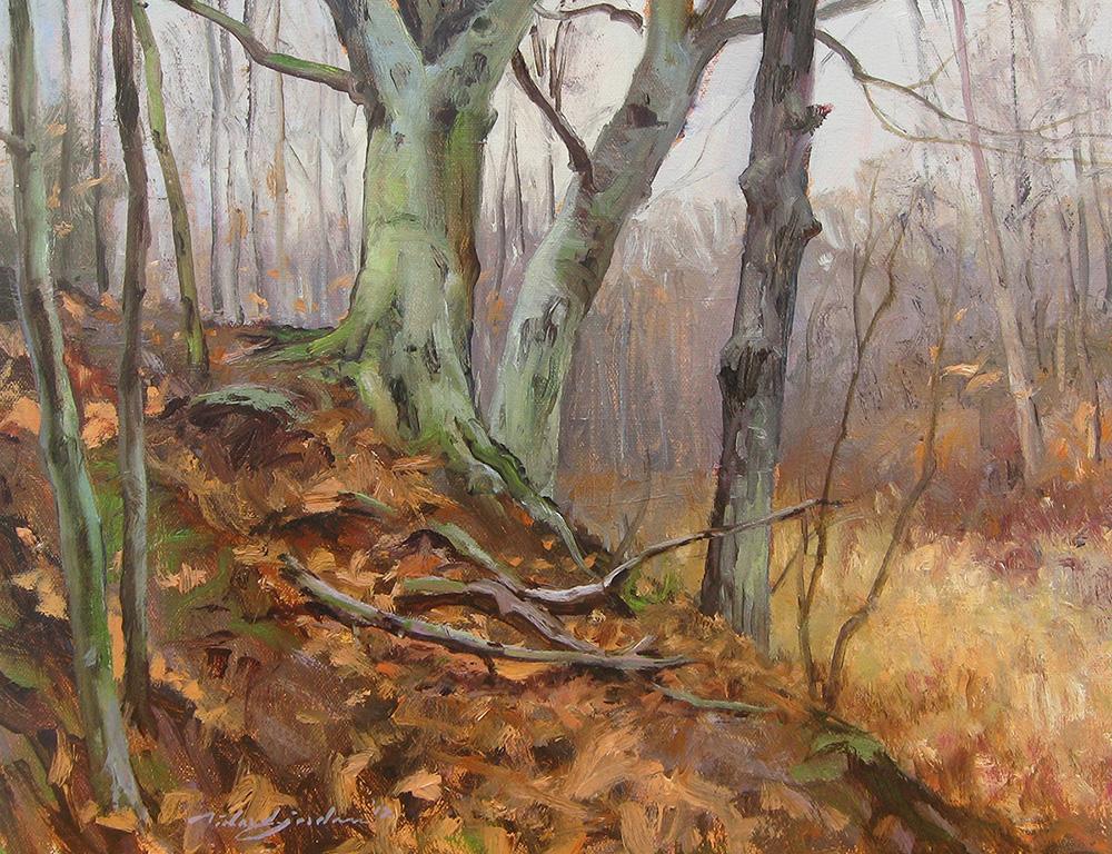 Black River Beeches (Richard Jordan)