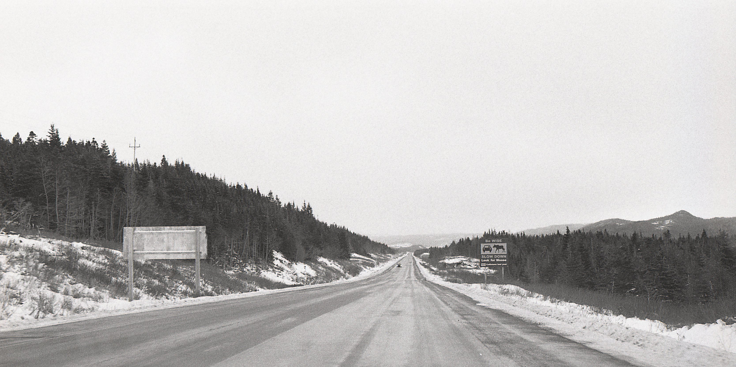 Heading to the airport. The sign on the right warms about moose, frequent visitors on local highways.