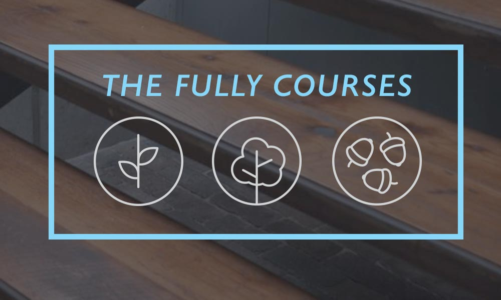 The Fully Courses