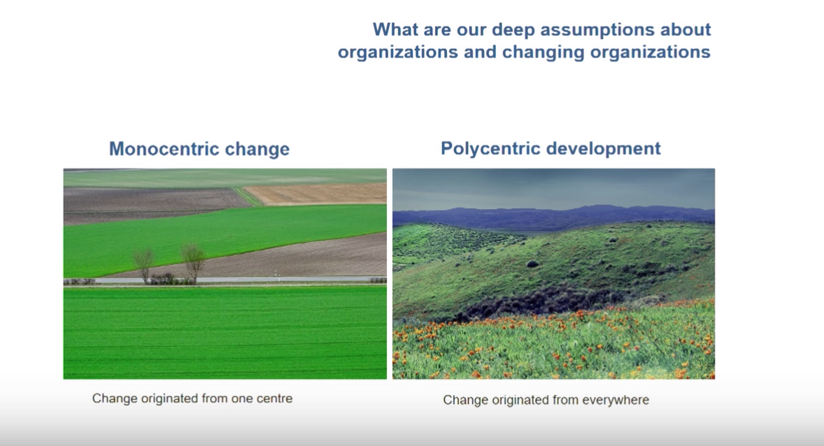 What are our deep assumptions about organizations and changing organizations