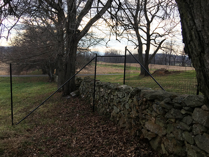 Deer Fence spanning rock wall.
