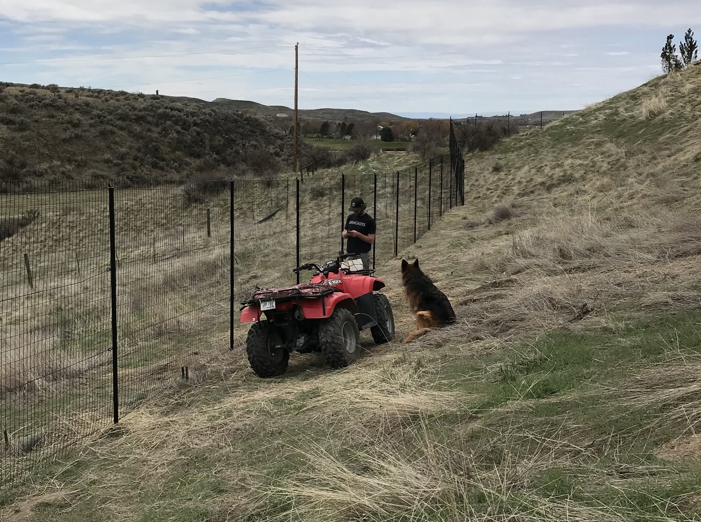 Installation by Starratt Custom Fence in Idaho using the Benner Deer Fence System. The Shepard is supervising. If you look closely, you can see the 4 metal cable system being used to help strengthen the overall integrity of the fence. This  deer fence  is used to keep not only deer out, but also elk and coyote.