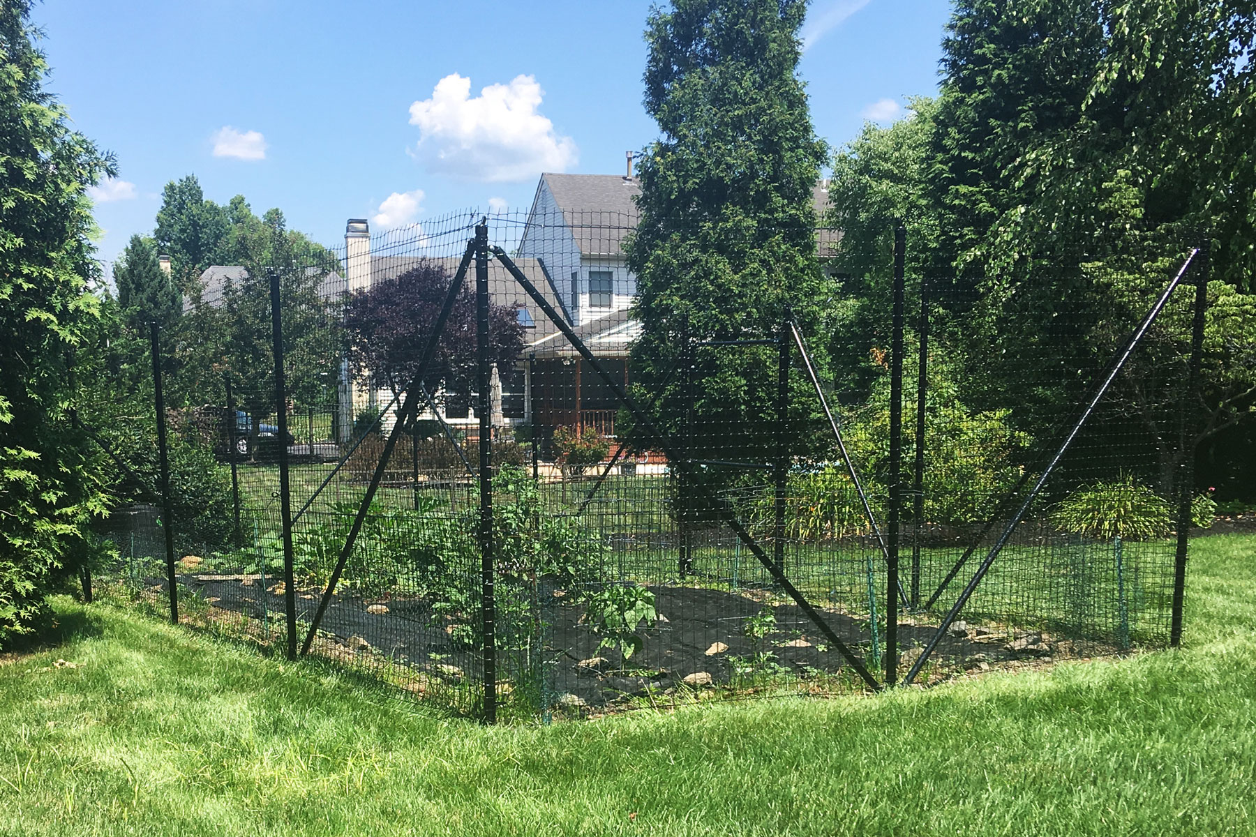 Garden Fence The Benner Deer Fence Company