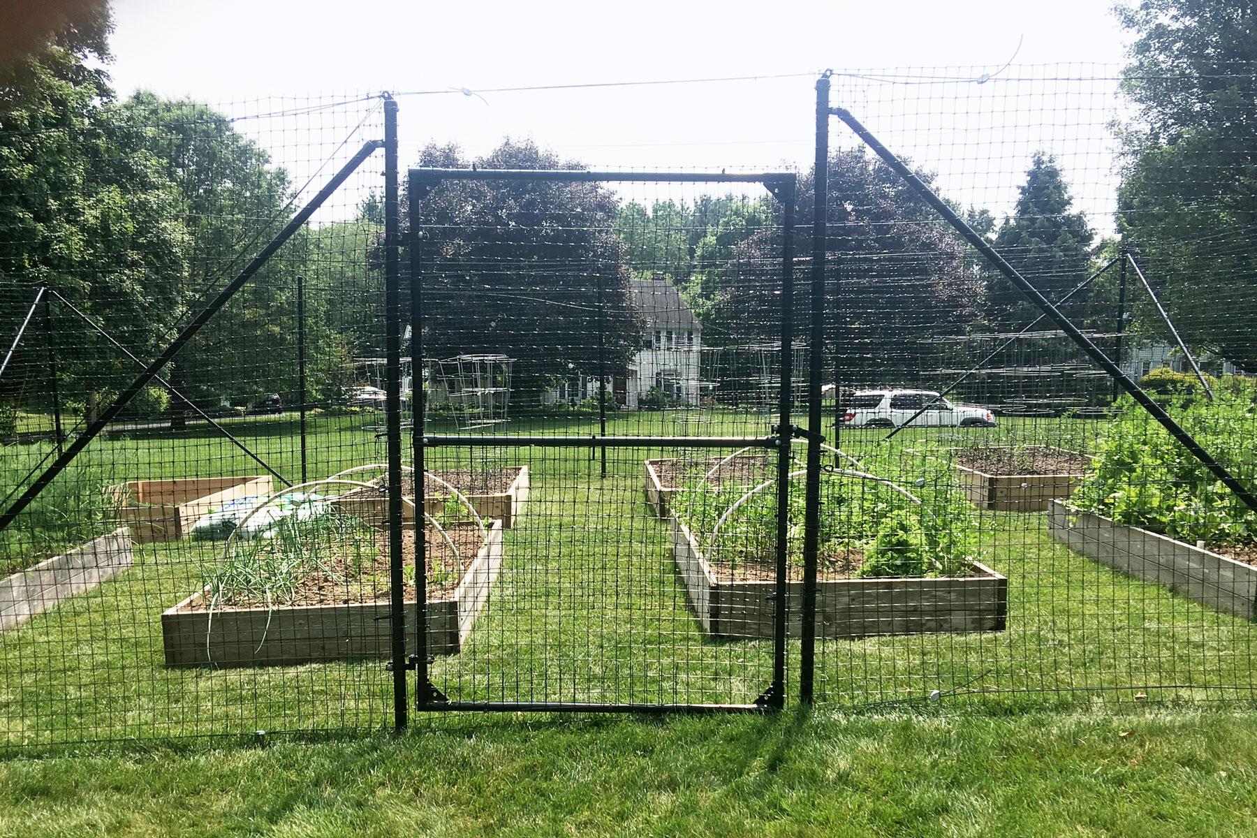 garden-fence-gate.jpg