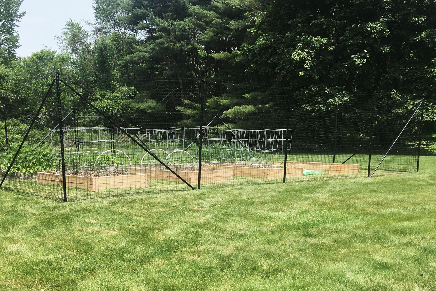 raised-bed-garden-fence.jpg