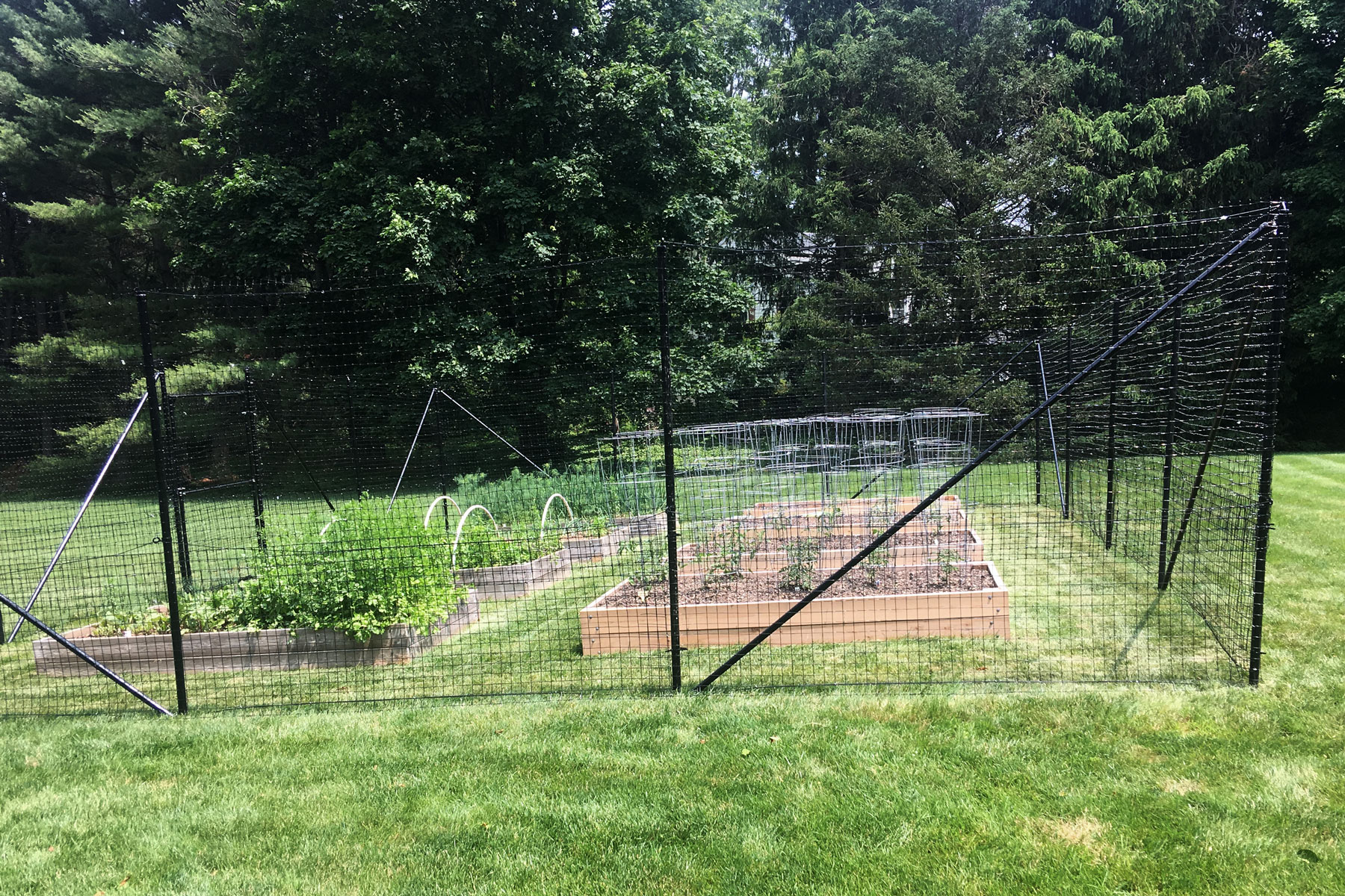 small-garden-fence.jpg
