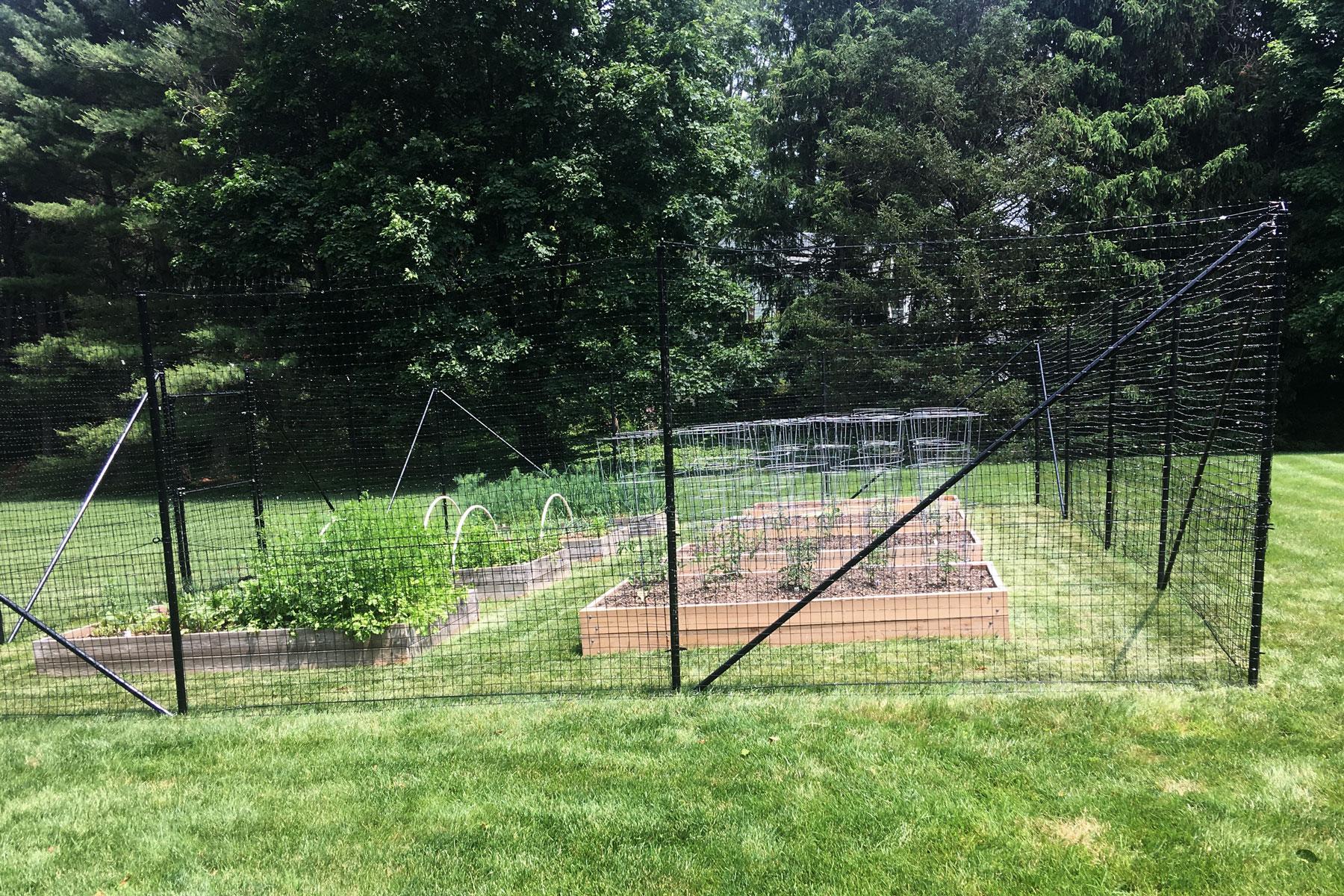 Garden Fence The Benner Deer Fence Company