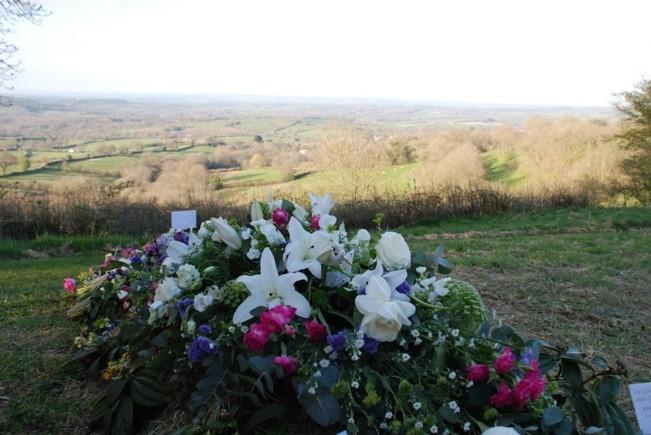Higher Ground Meadow Dorchester UK.jpg