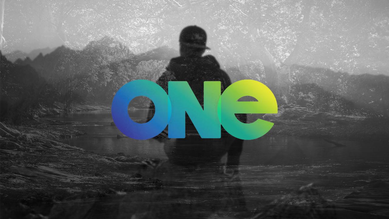 OneMain.jpg