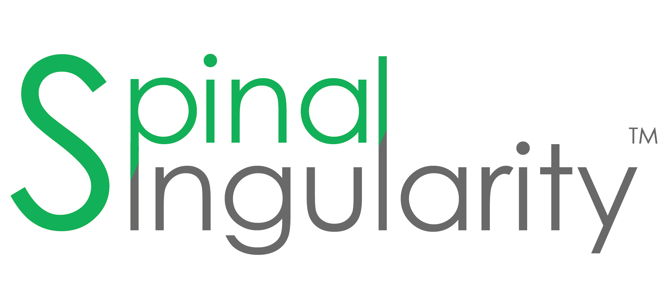 Spinal Singularity Logo TM @2x.jpg