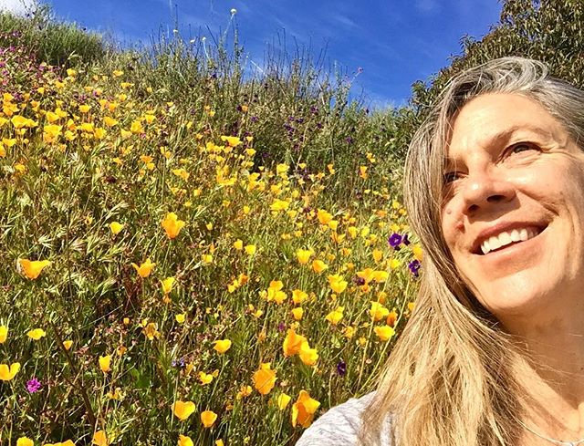Oh Glorious!! What a day here in #sandiego So fortunate to be here for the bloom. Rolling hills of poppies, sage, lupines... so much color! Ready to bloom in the dance with you tomorrow at #5Rhythms #harmonywaves #superbloom #doesntgetbetterthanthis #californianative