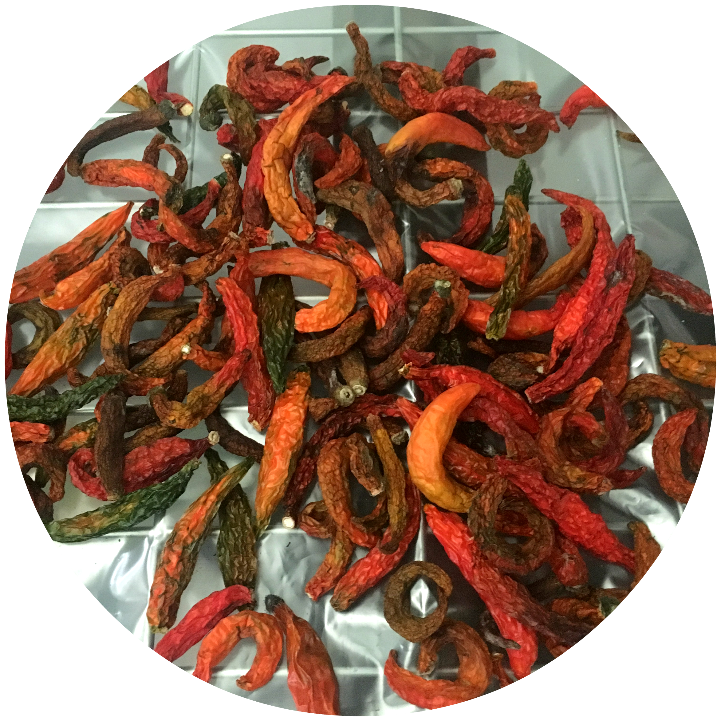 3 (chiles).png