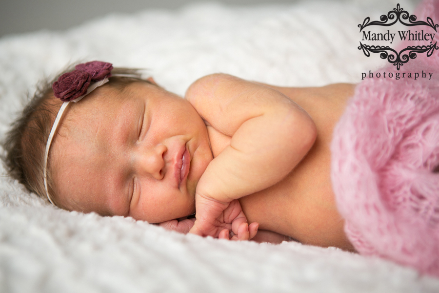 lifestyle newborn photographer in nashville tn