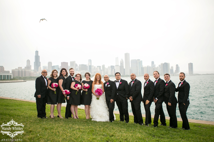 Wedding Photography with Chicago Skyline at Adler Planetarium