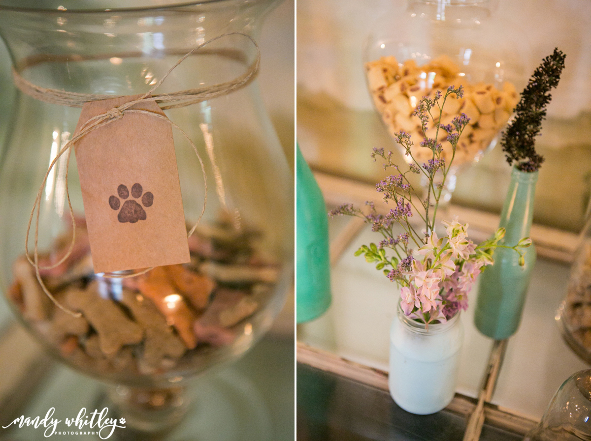 styled wedding shoot with dogs