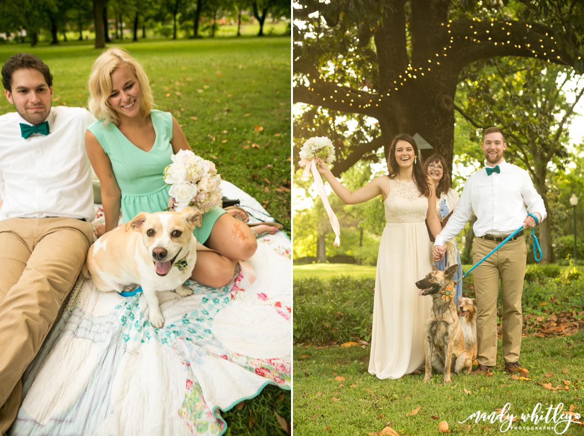 wedding inspiration weddings with dogs