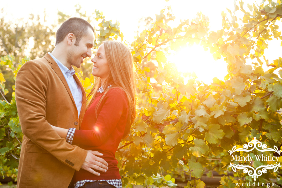 Arrington Vineyards Engagement Session Nashville Wedding Photographer