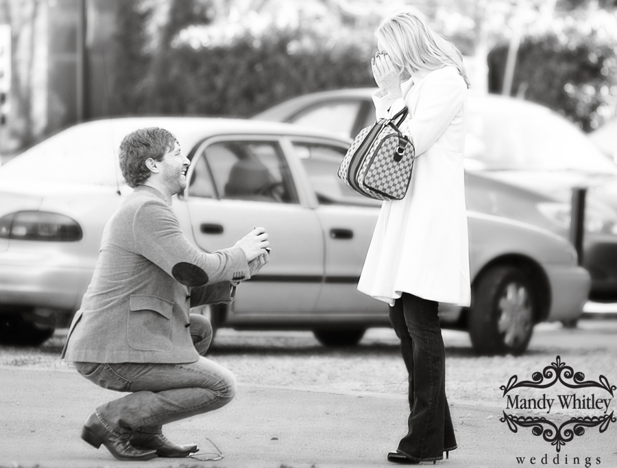 Nashville Proposal Photographer Mandy Whitley Wedding Photographer