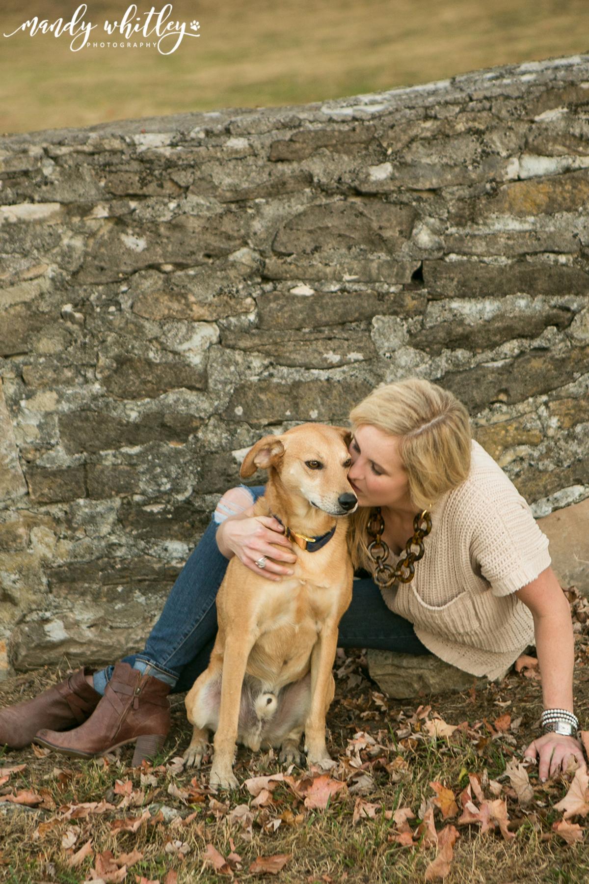 Dog Photographer in Nashville Mandy Whitley