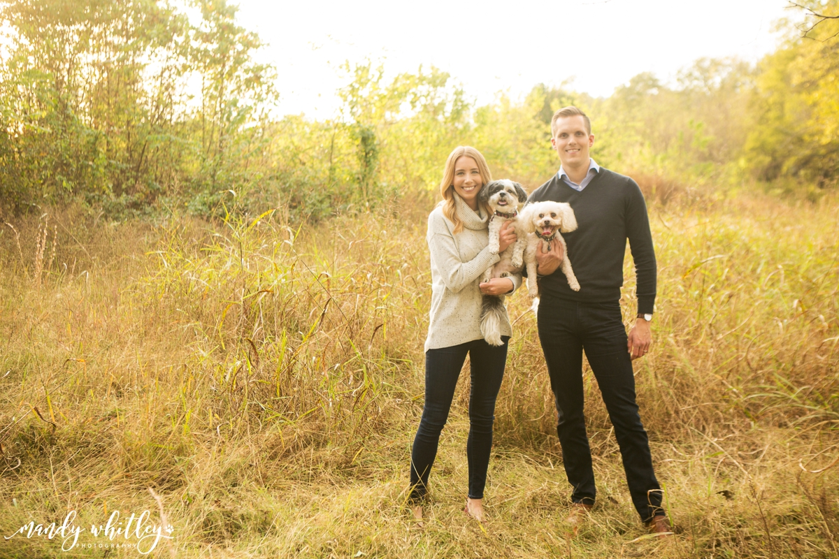 Nashville Pet Photographer Dog Photography