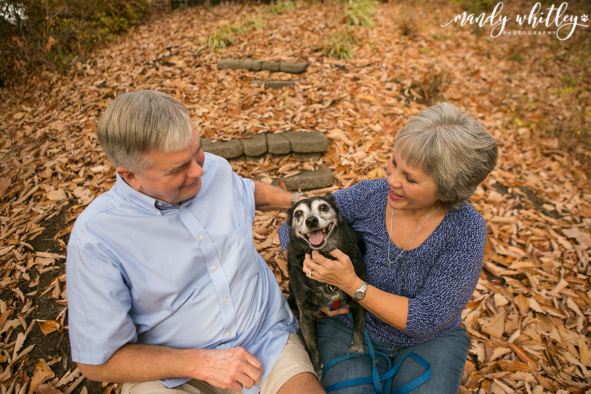 Nashville Pet and Family Photographer