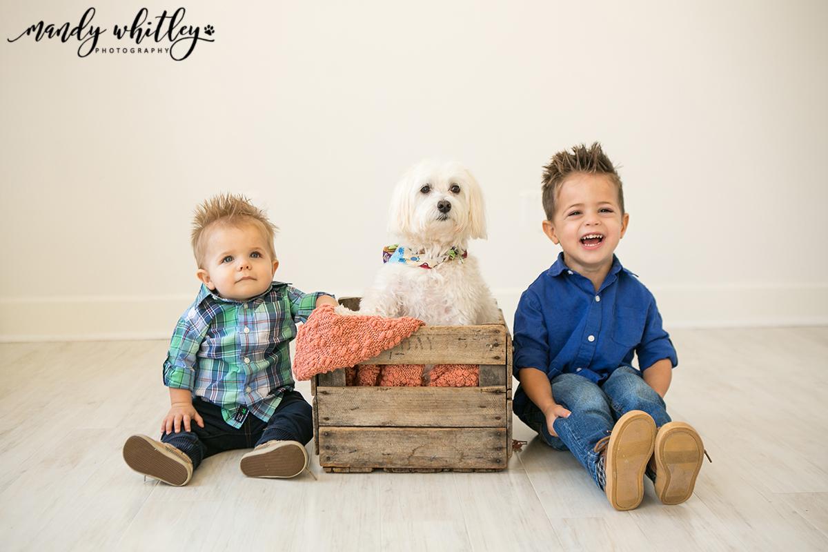 Nashville Family Pet Photographer1