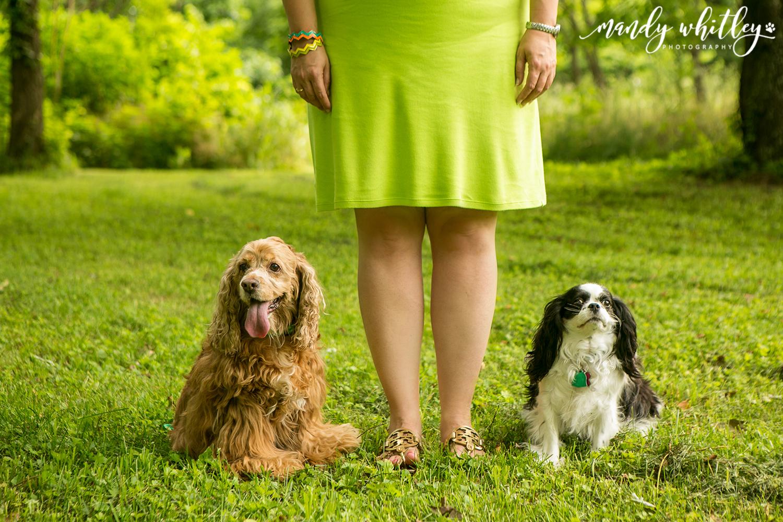 Mandy Whitley Dog Photographer