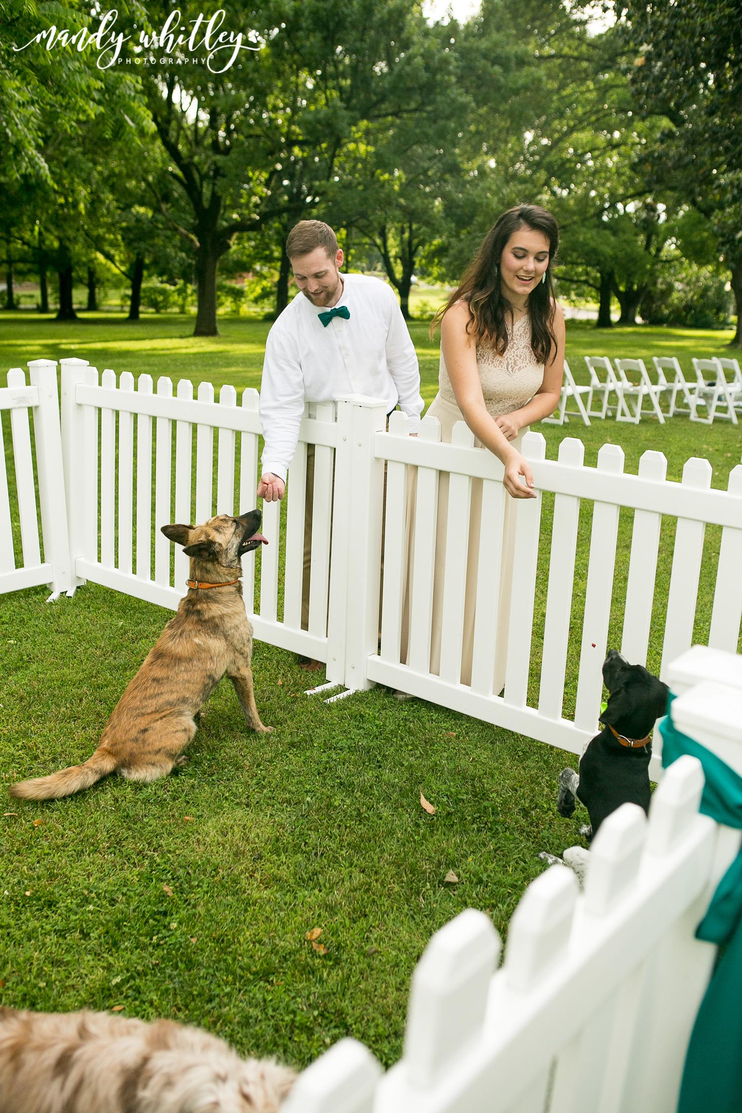 Pet-Friendly Wedding Venue Nashville