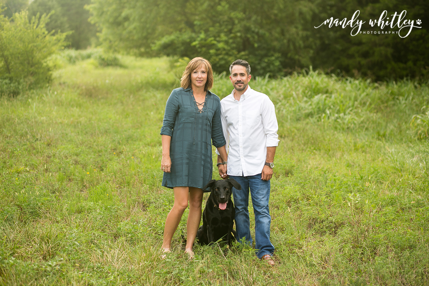 Tennessee Dog Photographer