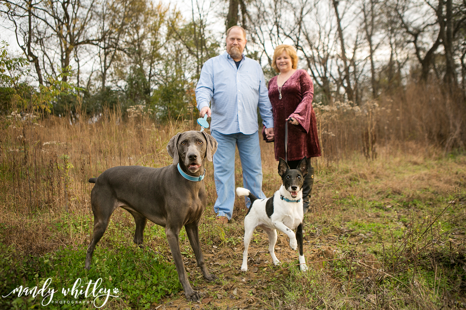 Nashville Family and Pet Photographer Mandy Whitley