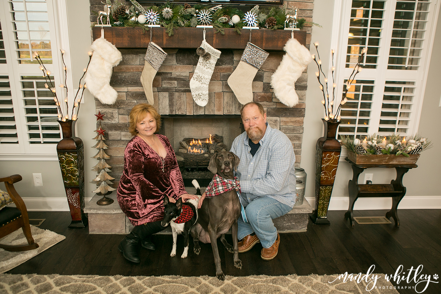 Pet and Family Photographer in Nashville TN