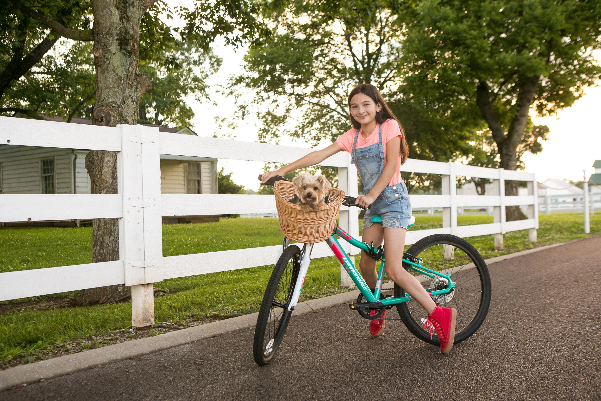 Nashville Pet Photographer | Nashville Portrait Photographer | Dog Photographer in Nashville