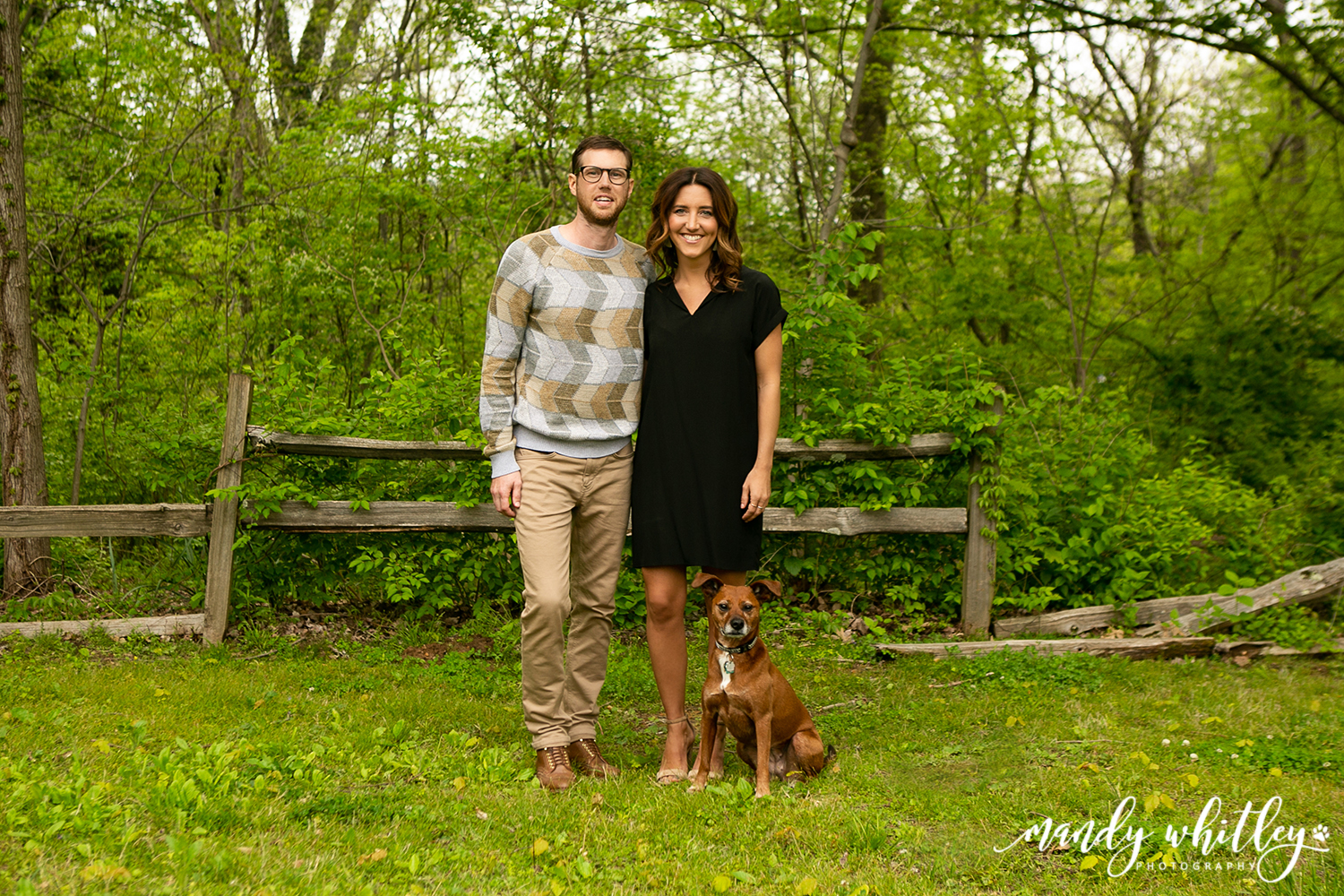 Nashville Dog Photographer Family Photographer Mandy Whitley